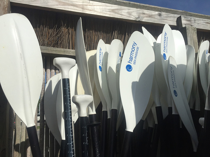 Weekly Paddle Rental