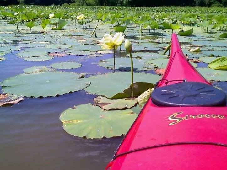 Paddle to Blandings Landing