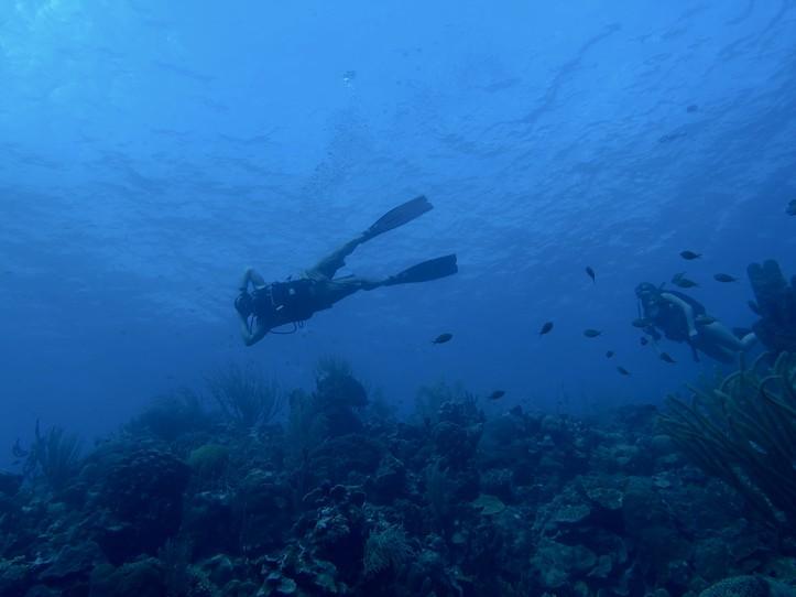 Deep Diver Specialty (130')